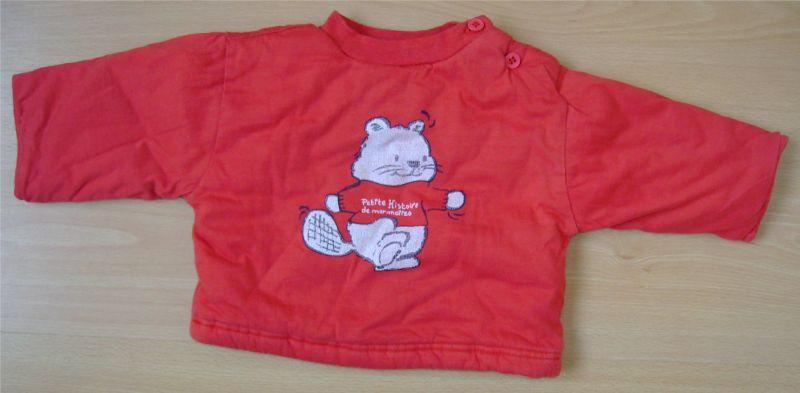 pull rouge avec une marmotte 3 mois.jpg